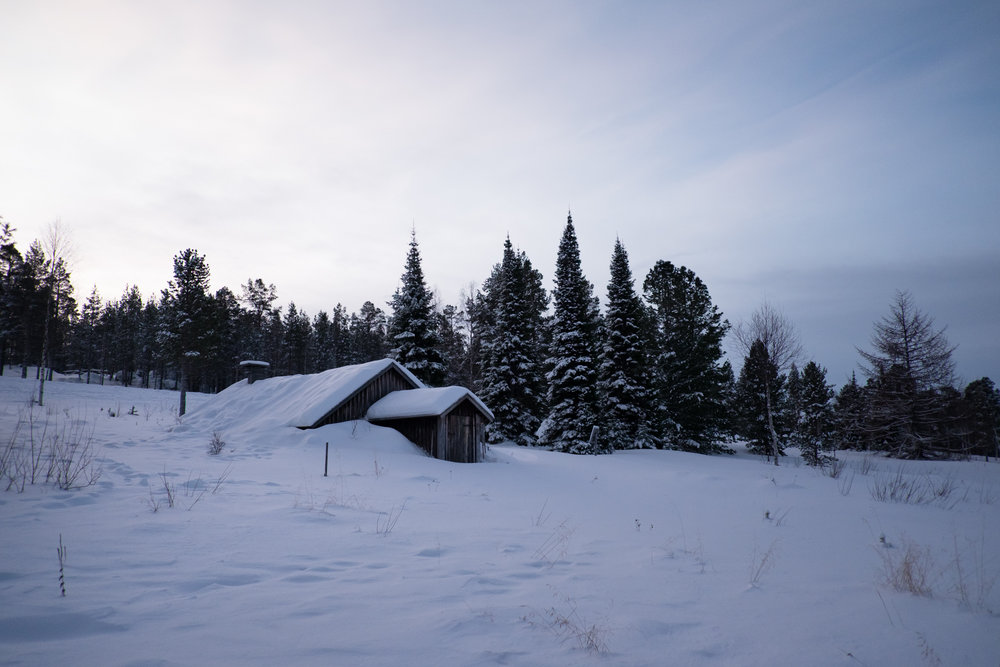 Lappland-VeWolff-7.jpg