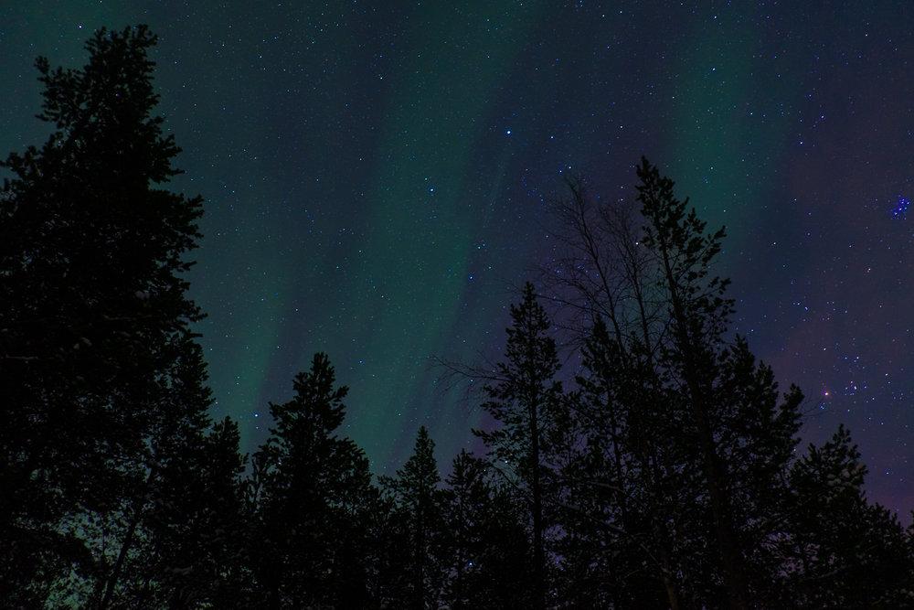Lappland-VeWolff-33.jpg