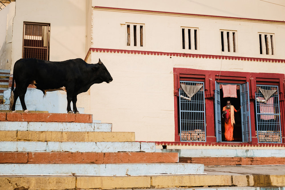 AnjaPoehlmann_India-Varanasi_152.jpg