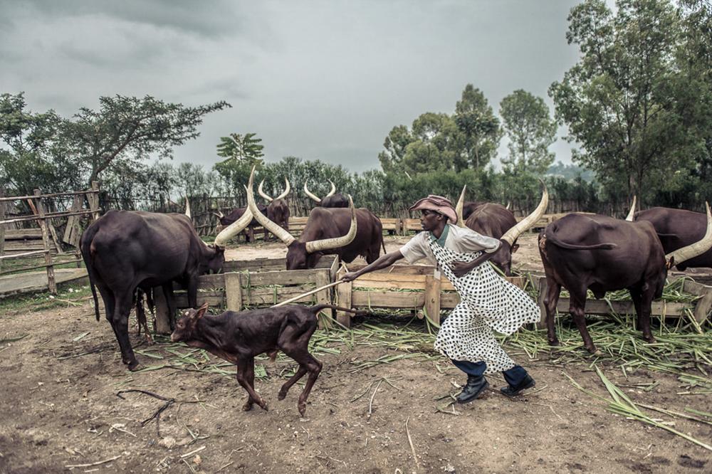Ruanda chris frumolt 2015-28.jpg