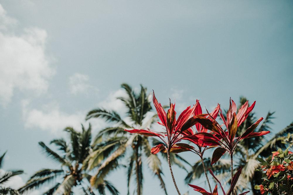 Fernweh_Bali (9).JPG