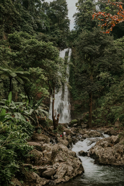 Fernweh_Bali (159).JPG