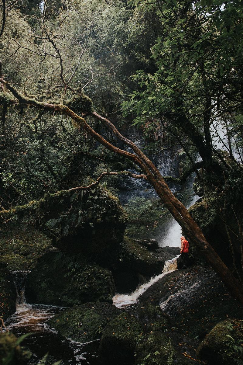 NeuseelandTeil2(148von241).jpg