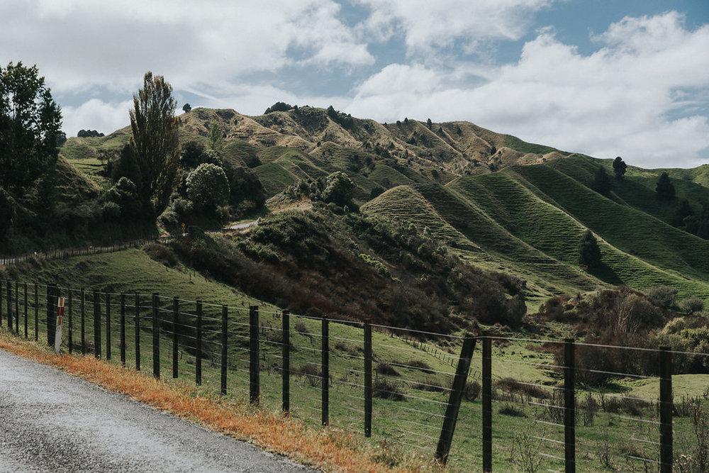 NeuseelandTeil3(237von265).jpg