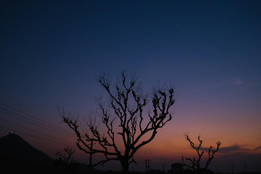 AlineLange_Indien_144.jpg