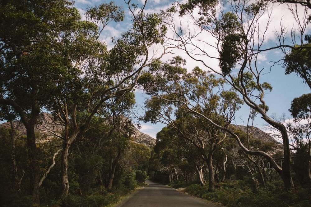 freycinet_national_park_0014.jpg