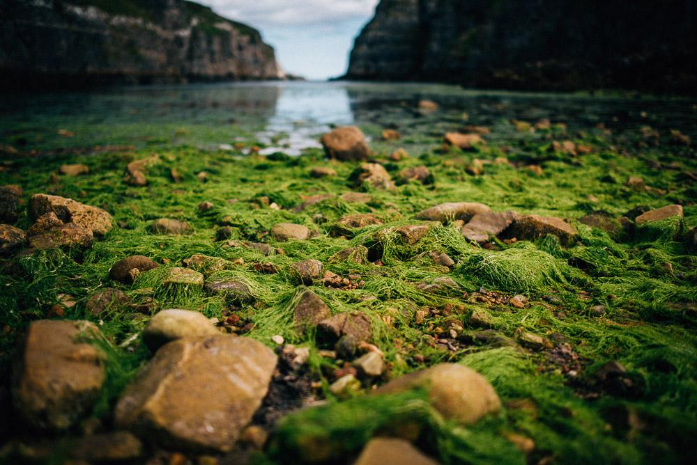 Schottland_FloFotografie_fernweh_019.jpg