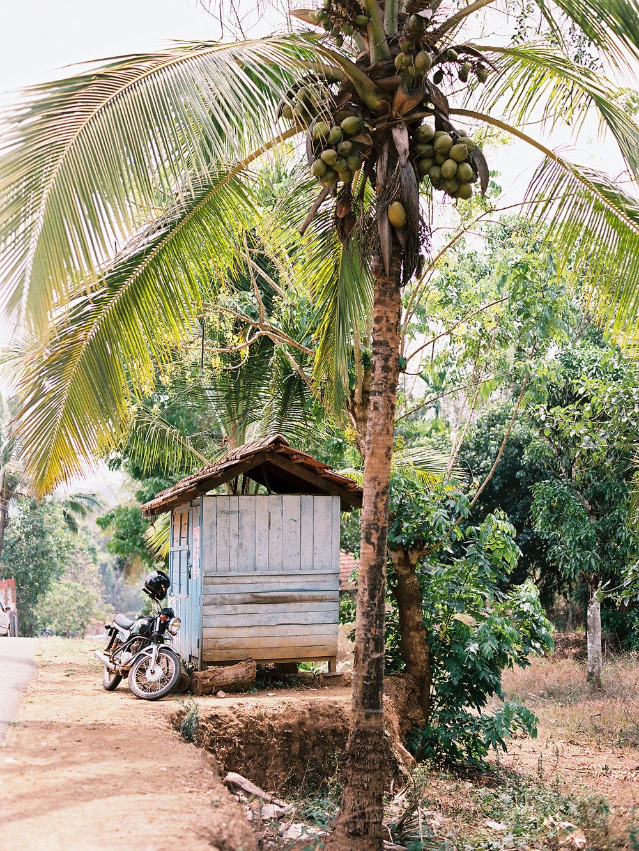 birgithart-travel-india_048.jpg