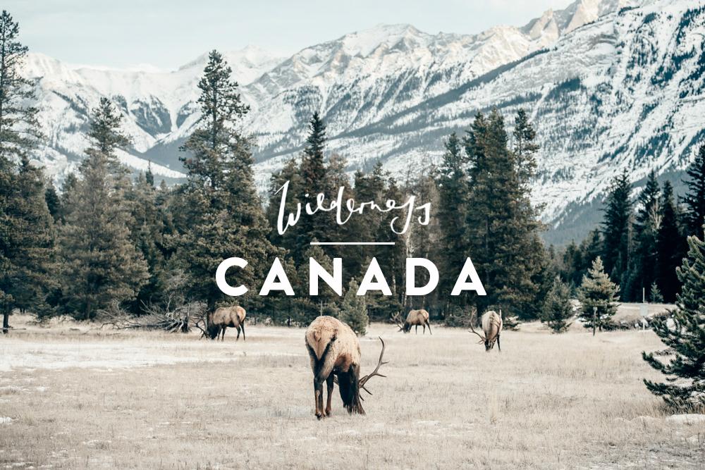 Canada_Header2.jpg