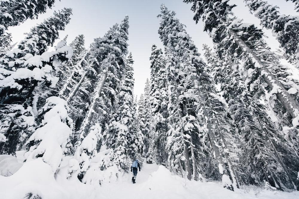 Banff National Park-25.jpg