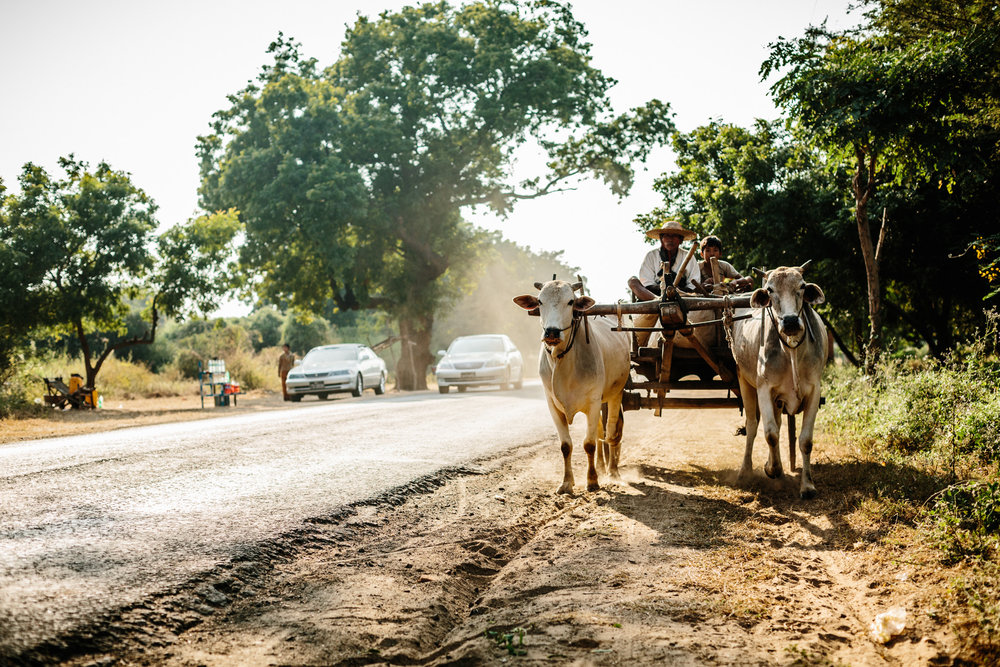 Myanmar-Christian-Biemann-35.jpg