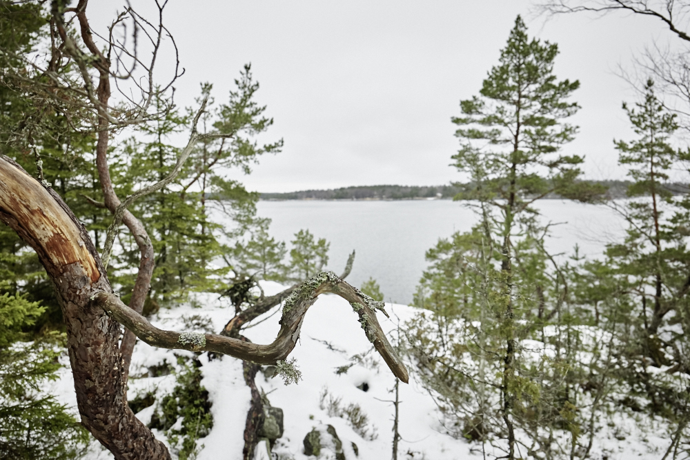 Christian_Bendel_Crossroads_Scandinavia_29.jpg
