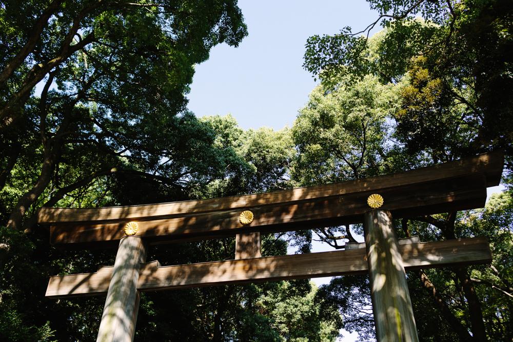 Japan_Aline_0424.jpg
