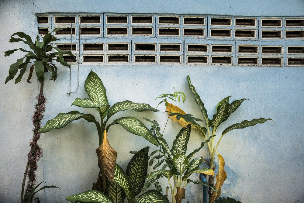 fabian stuertz 2018.12.25 - bangkok, thailand 0002-c.jpg