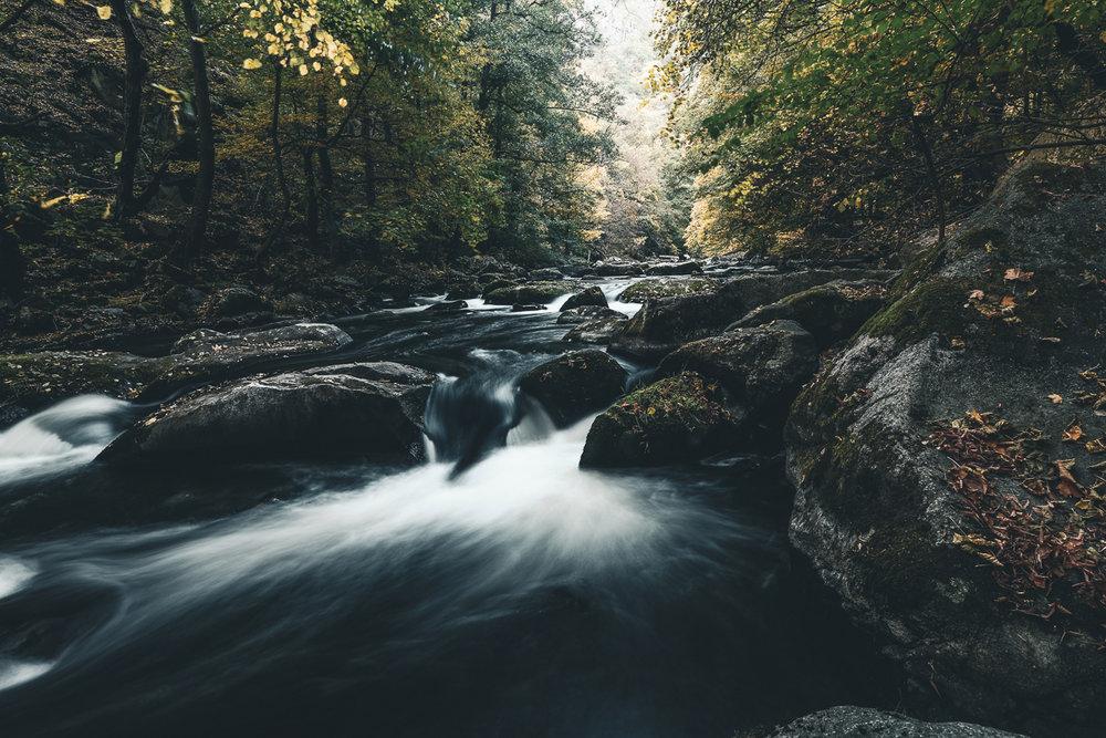 Herbst Bodetal_3.jpg