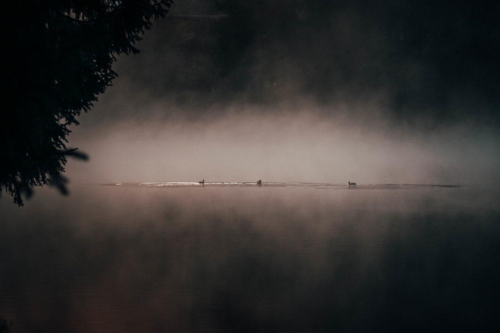 Herbst Hahnenklee_4.jpg