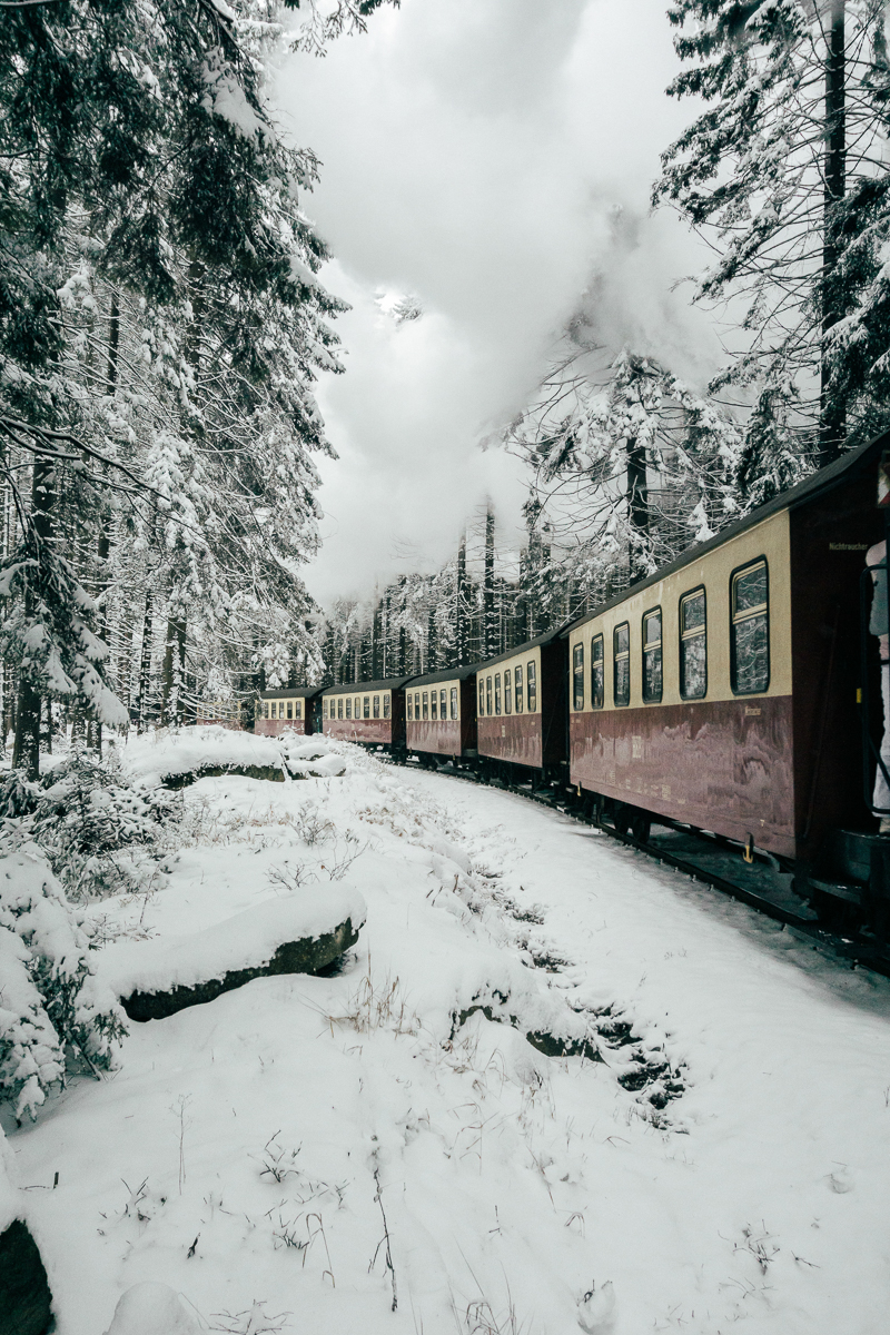 Winter Harz_9.jpg