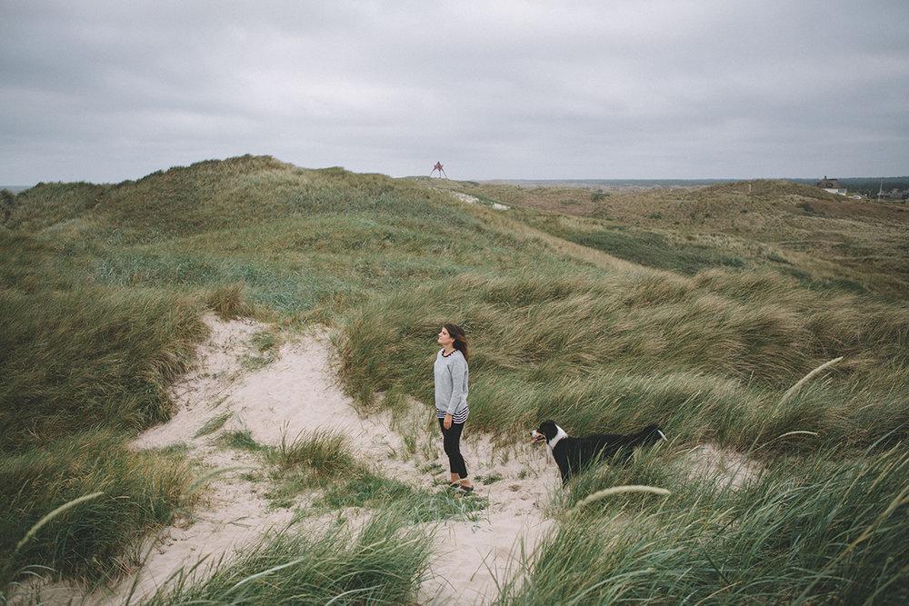 Vestjylland29.jpg