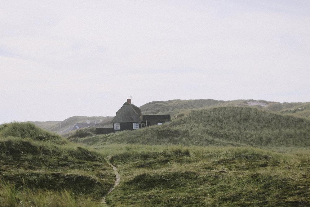 Vestjylland.jpg