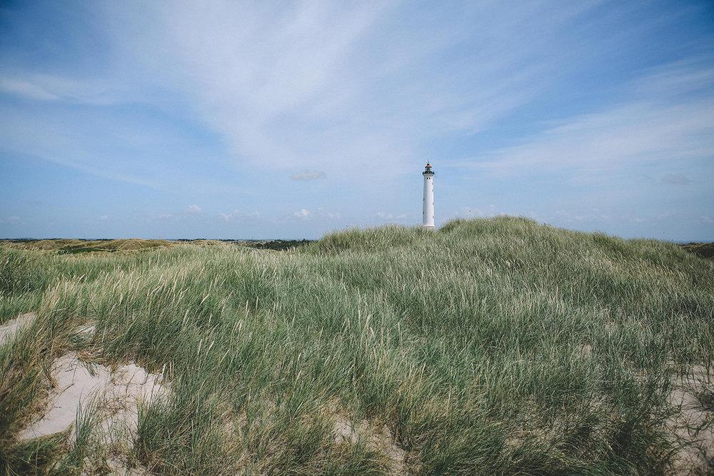 Vestjylland12.jpg