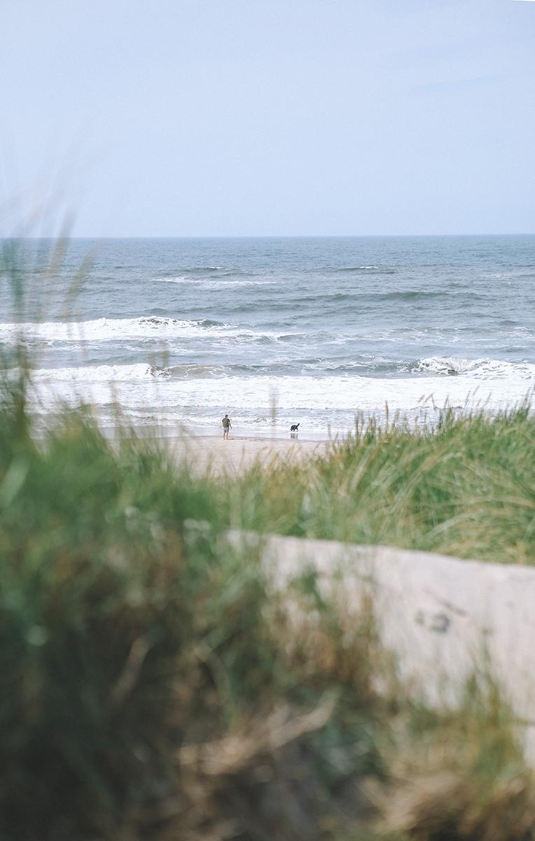 Vestjylland13.jpg