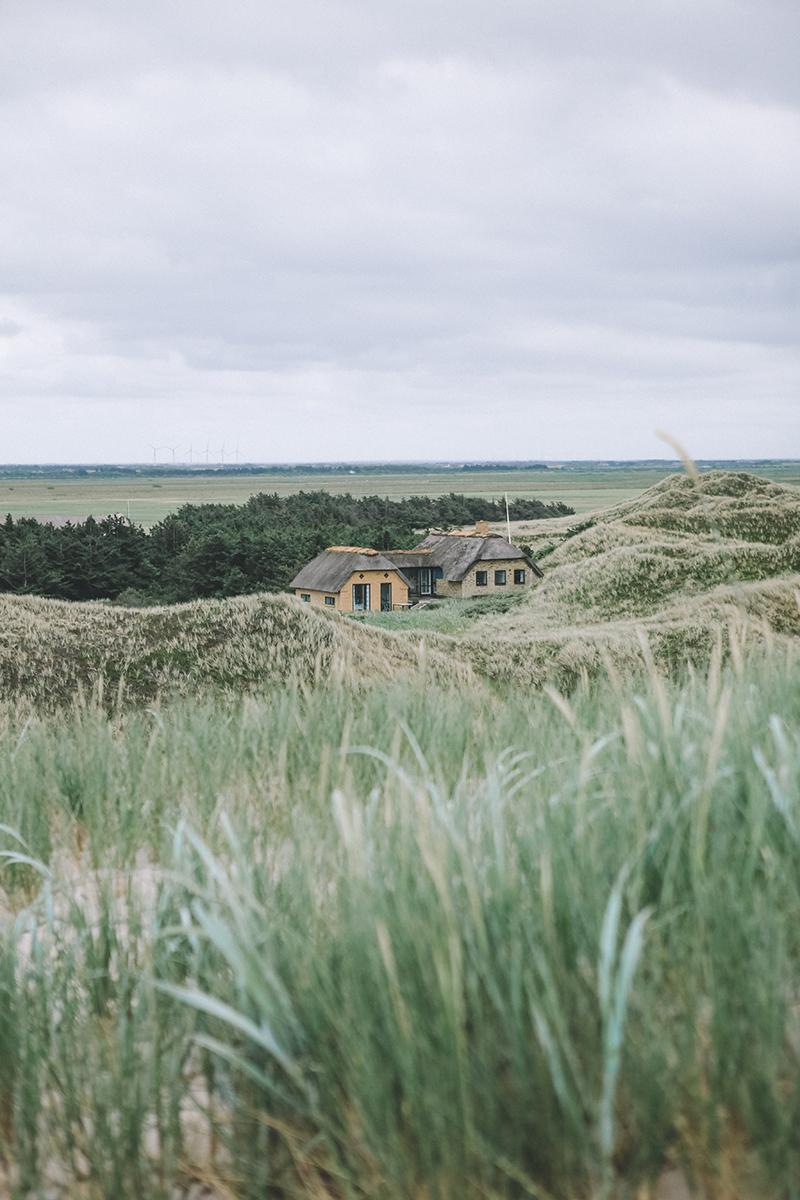 Vestjylland37.jpg