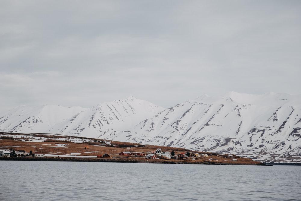 Island_Blog_Teil 1 (89 von 152).jpg
