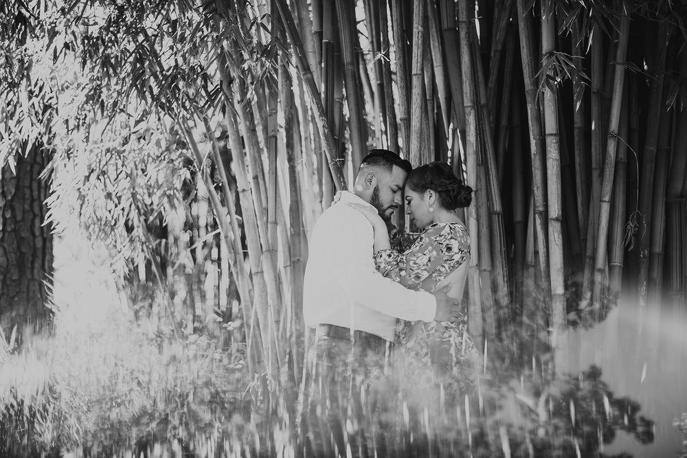 Houston-mercer-arboretum-engagement-photo-session