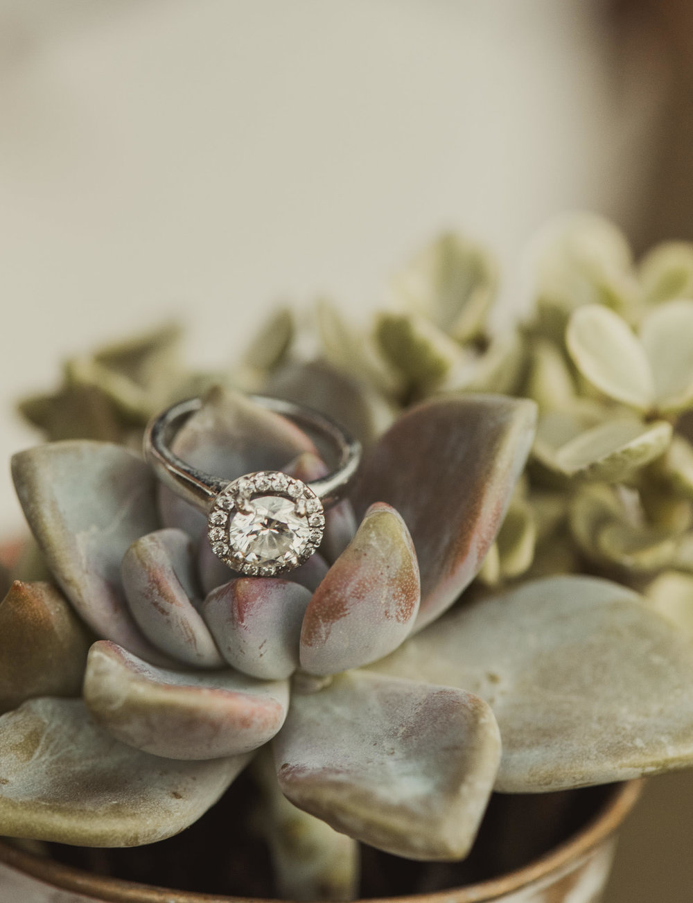diamond-ring-houston-wedding-engagement-photographer-macro-nikon-105-jason-smelser