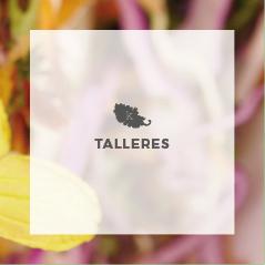 TALLERES KALEGRIA