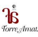 logo_torreamat.png