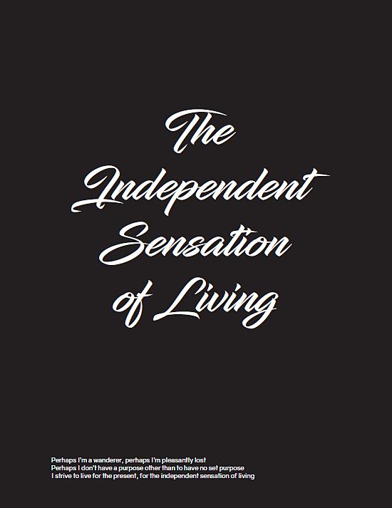 Independentsensation2.PNG