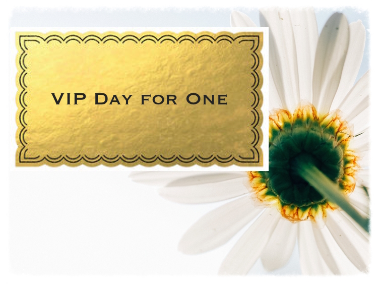 VIP Day for One with daisy.jpg