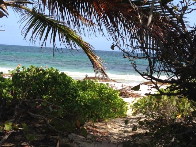 Navio Beach.jpg