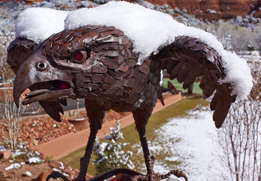 Enchantment Hawk