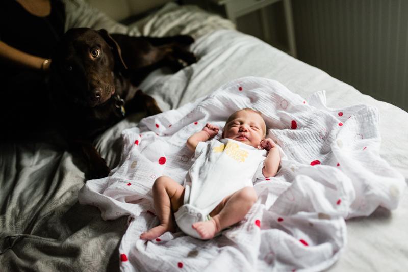 vancouver newborn photographer-46.JPG