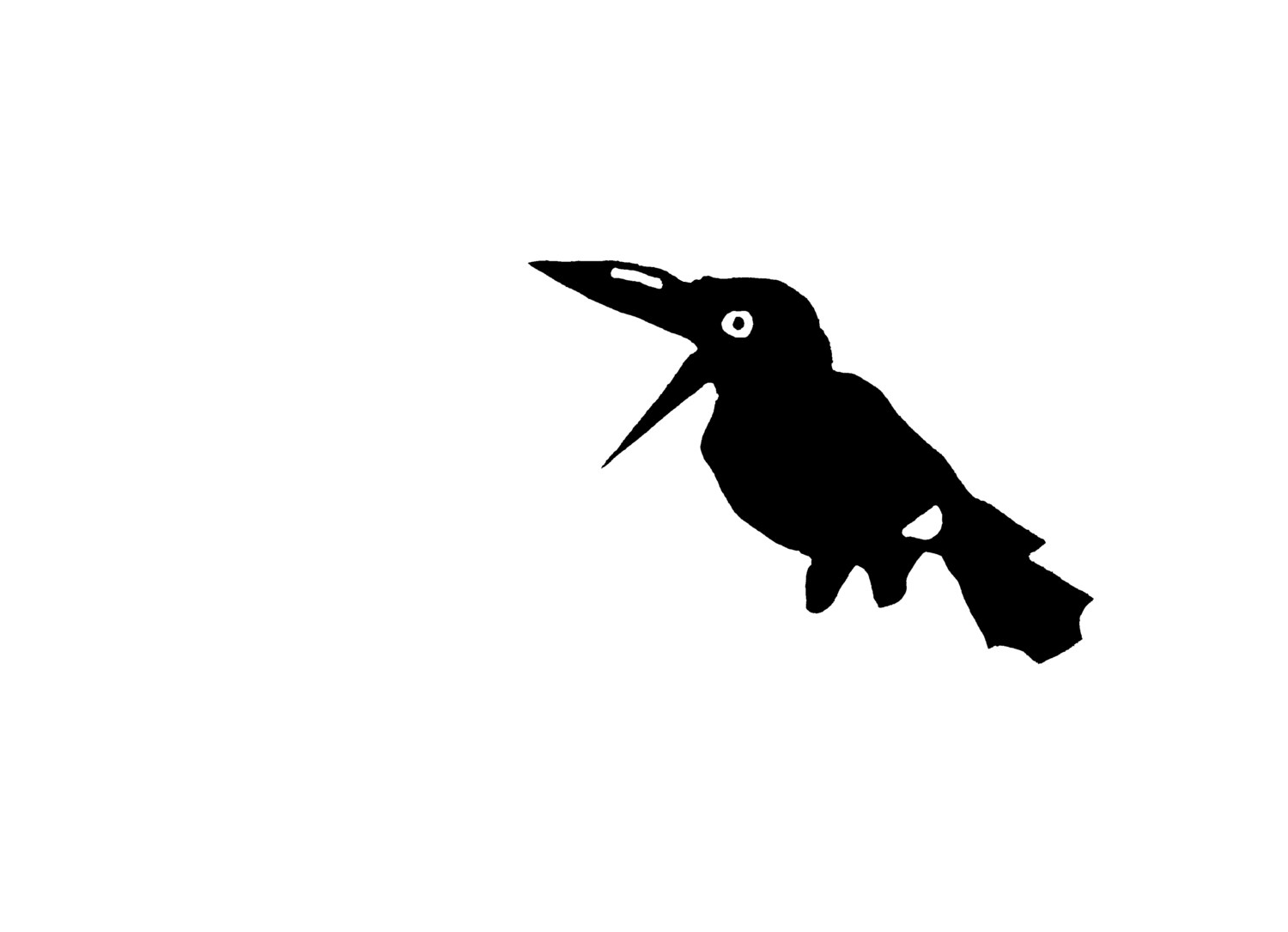 Cradle Mountain Film Festival