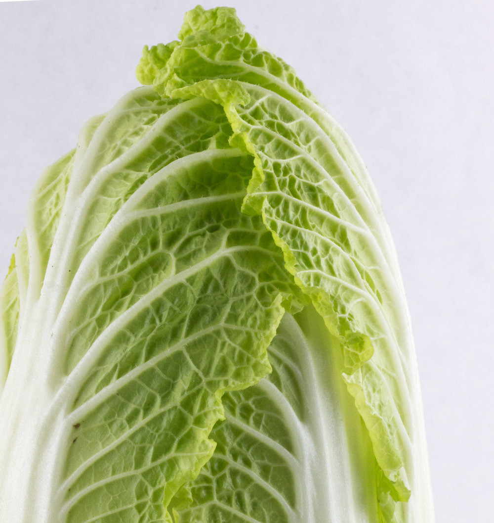Napa Cabbage close-up