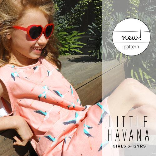 Little-havana-6.jpg