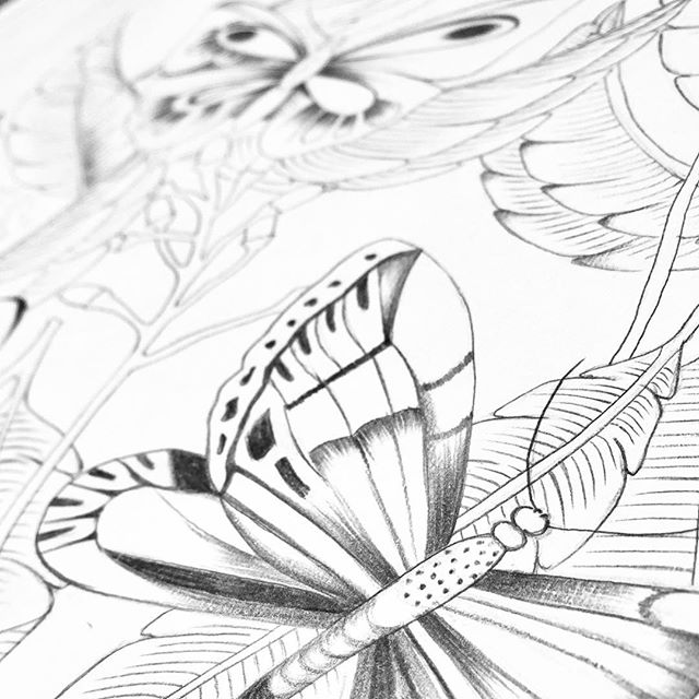 Sketching my little heart out at the moment, Visions of a fabric collection slowly forming. Yet to add the colours. Anyone obsessing over something in nature at the moment? Input for inspiration is always welcome 🌿  #patternandcloth #fabricdesign #drawingnature #sketch #butterflyprint #naturedrawing