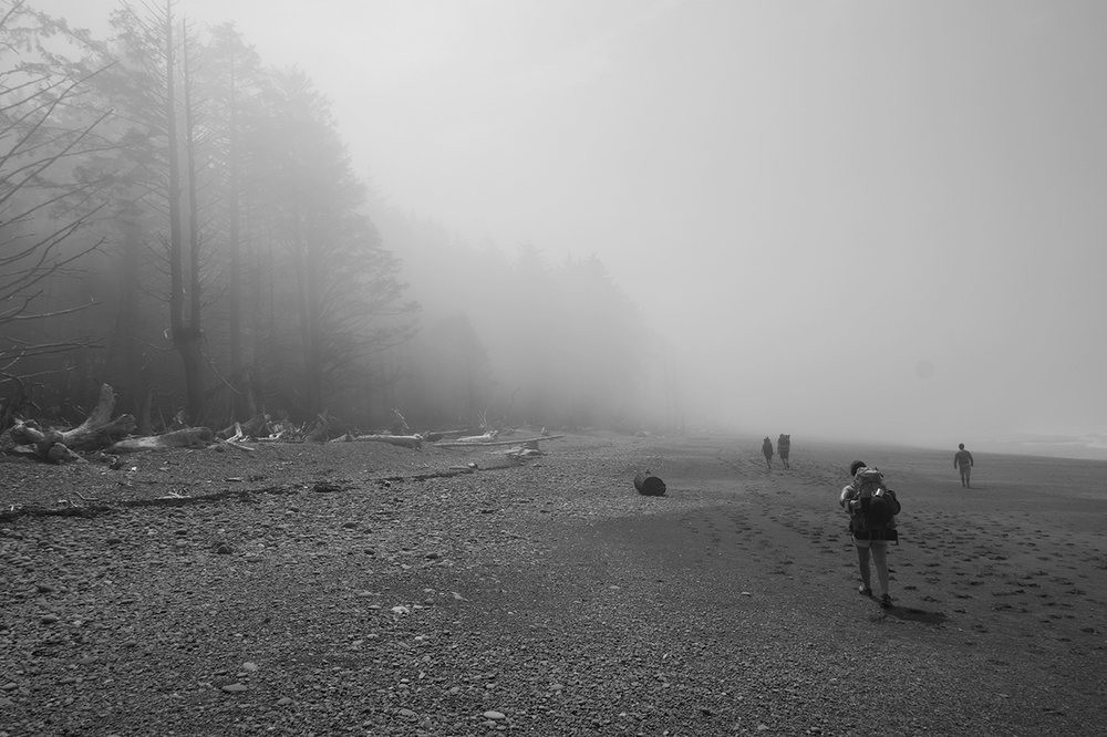 Heading south on the Olympic Coast.    Prints available upon request.