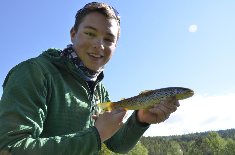 Stunning Brownie from the Øystre Slidreåene, the river which served as camp for three nights.