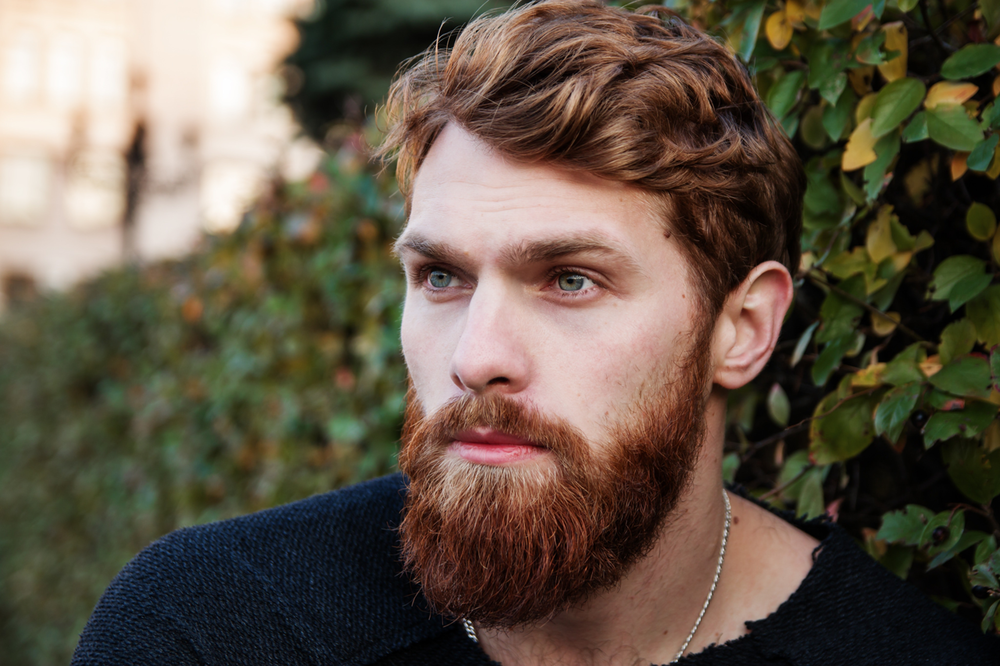 adult-attractive-beard-2478851.png
