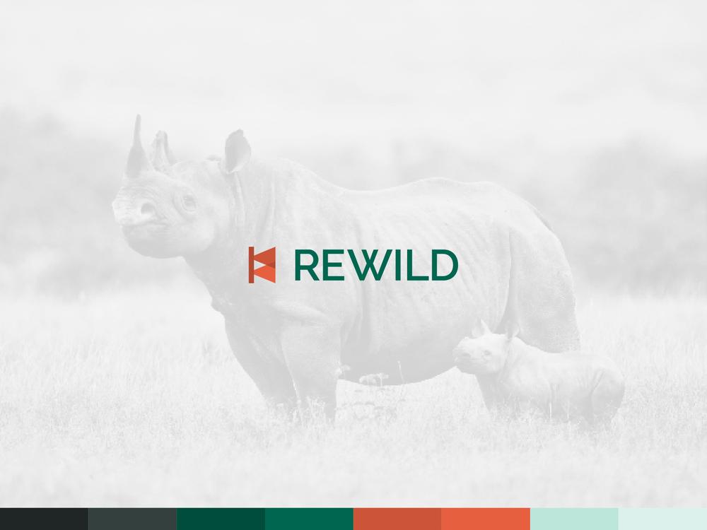 Rewild brand by Chiara Mensa