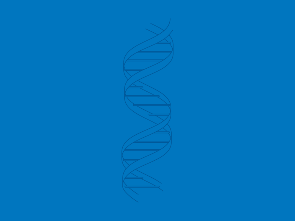 DNA  vector illustration by Chiara Mensa, for Onespacemedia
