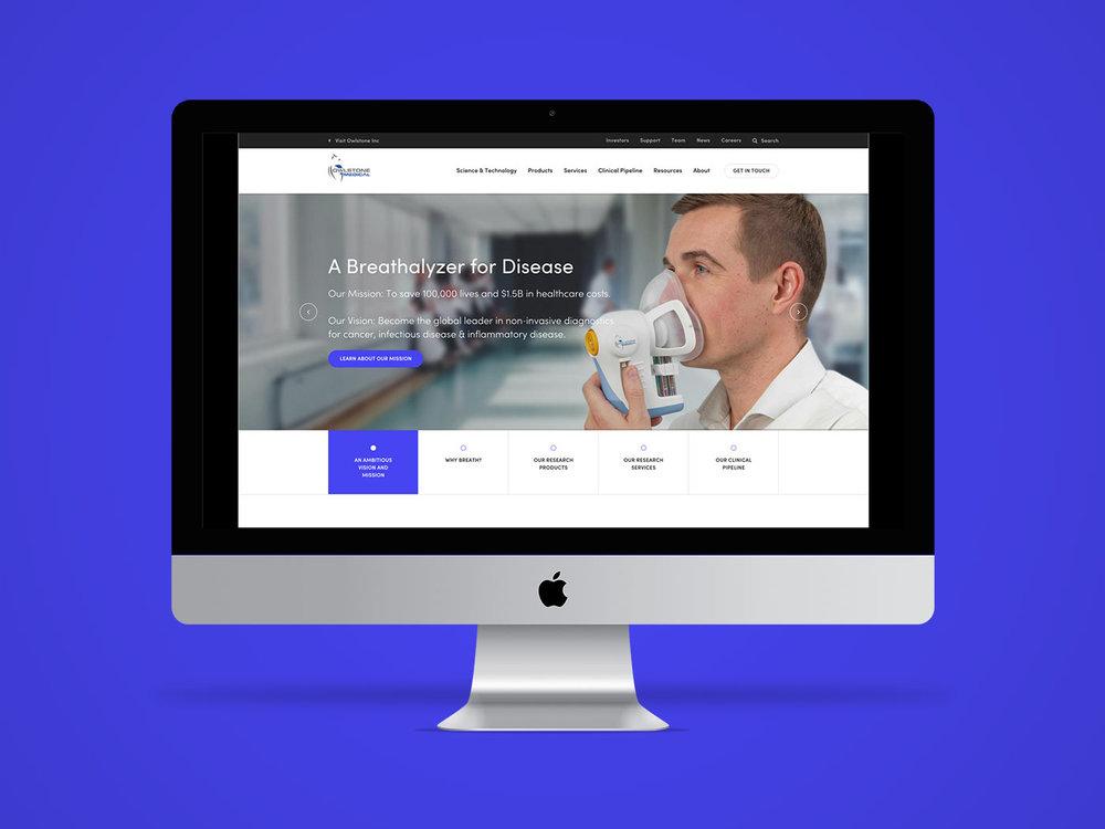 Owlstone Homepage, by Chiara Mensa