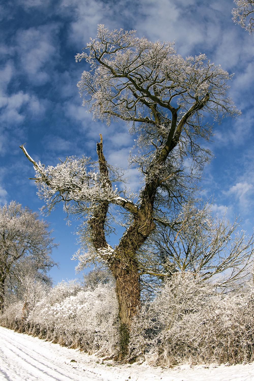hethersett snow_0101.jpg