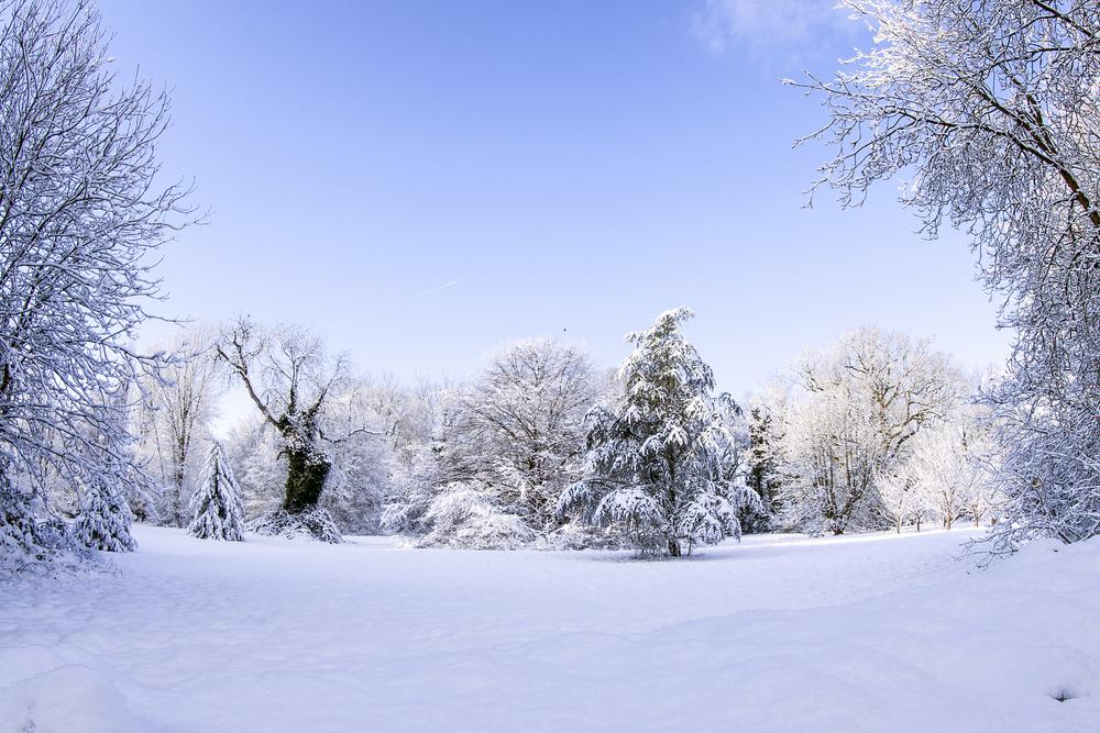 hethersett snow_0125.jpg
