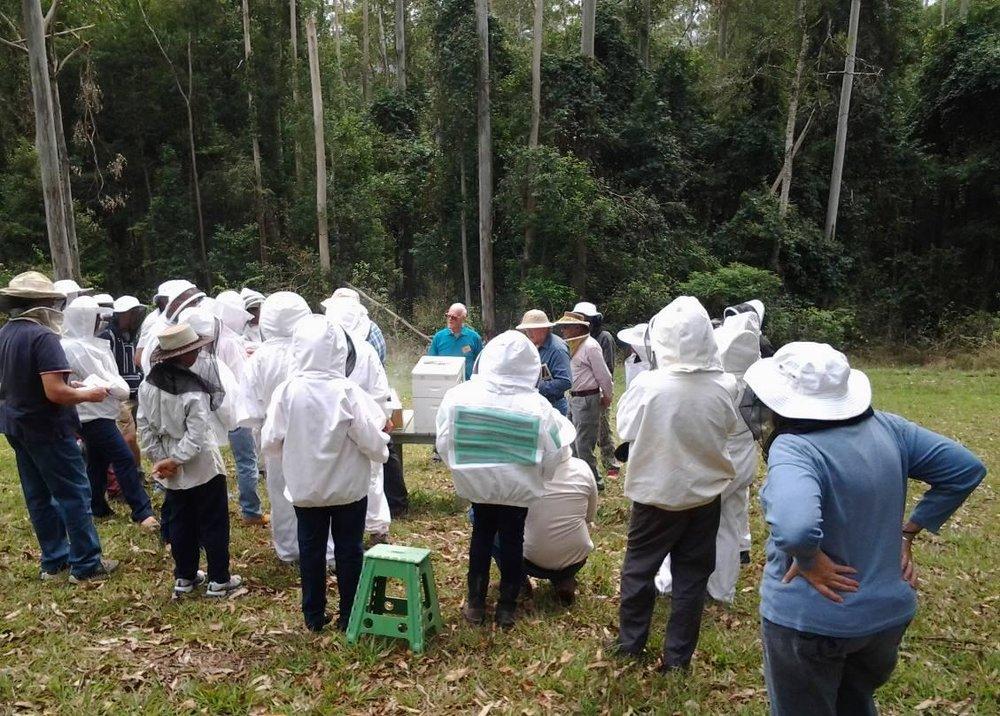 Members at Merridy's apiary