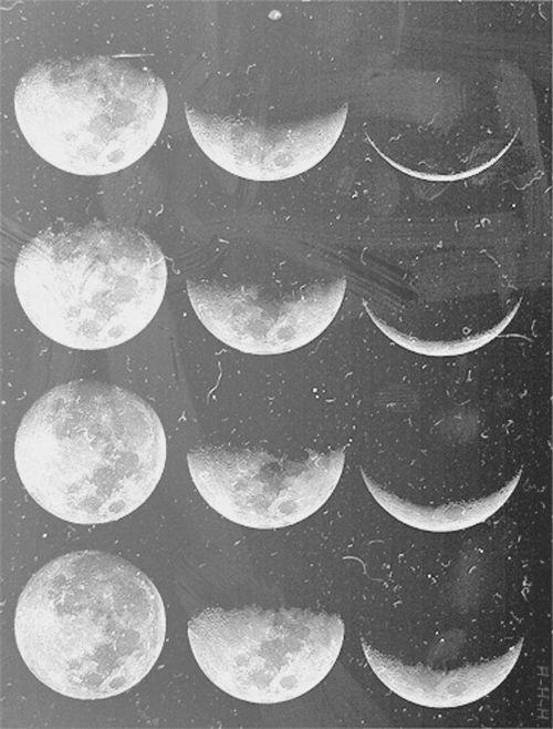 La Lune | KM DESIGN